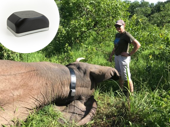Elephant tracker