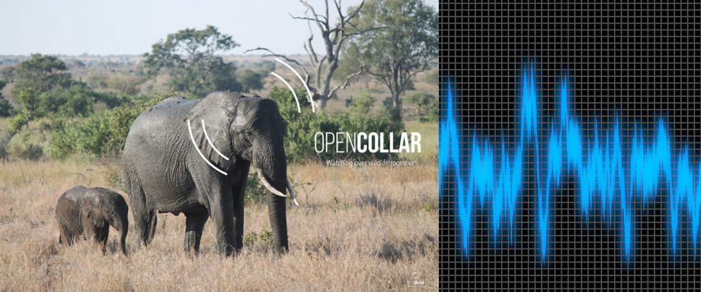ElephantEdge tracker